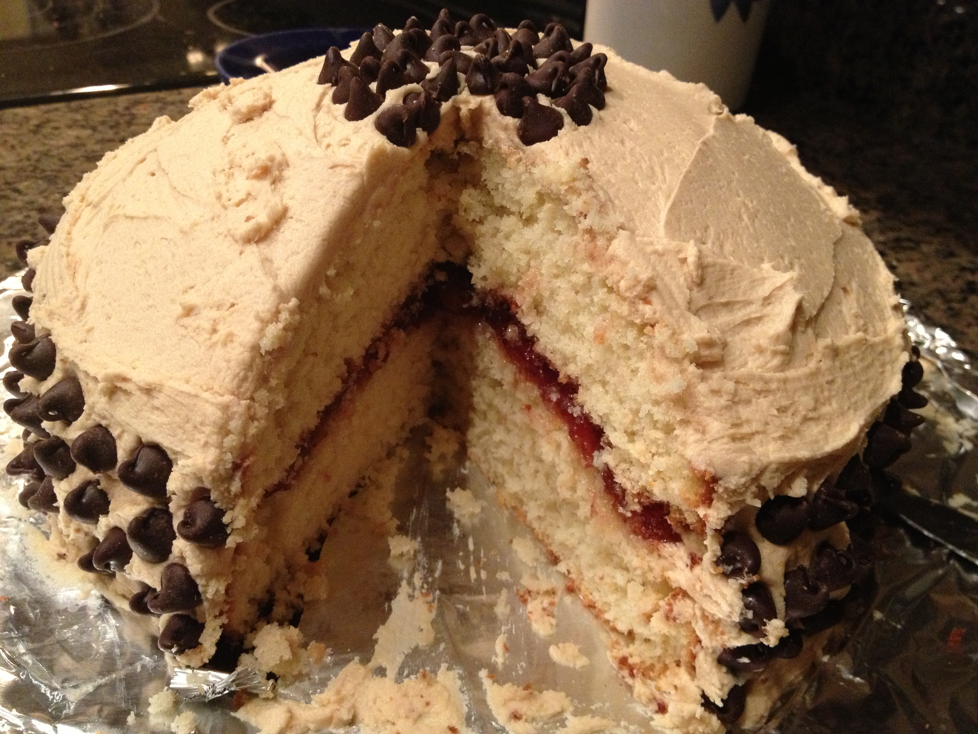 Peanut Butter and Jelly Cake | Chaos and Cookies